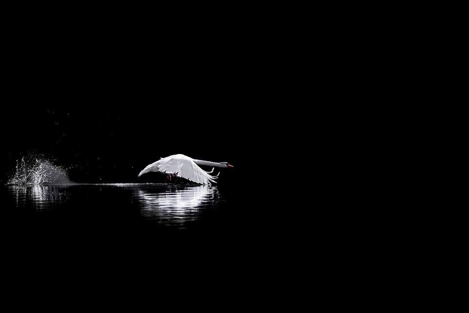 Location: Dobbiaco Lake, Italy