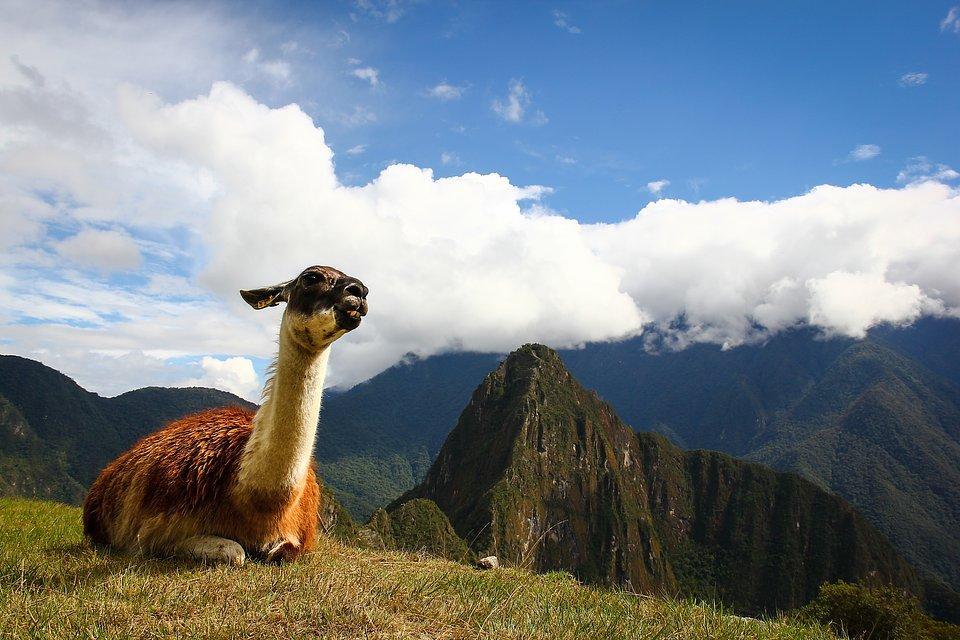 Location: Machu Picchu, Peru