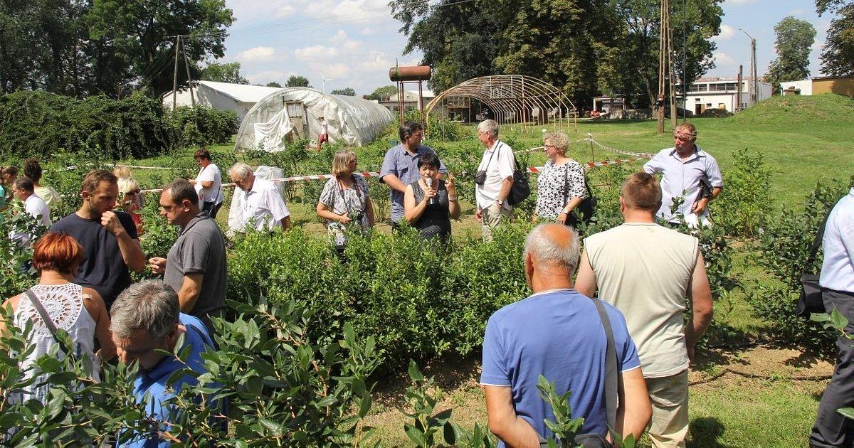 Zapraszamy do owocowego raju w Masłowicach 9 lipca 2020