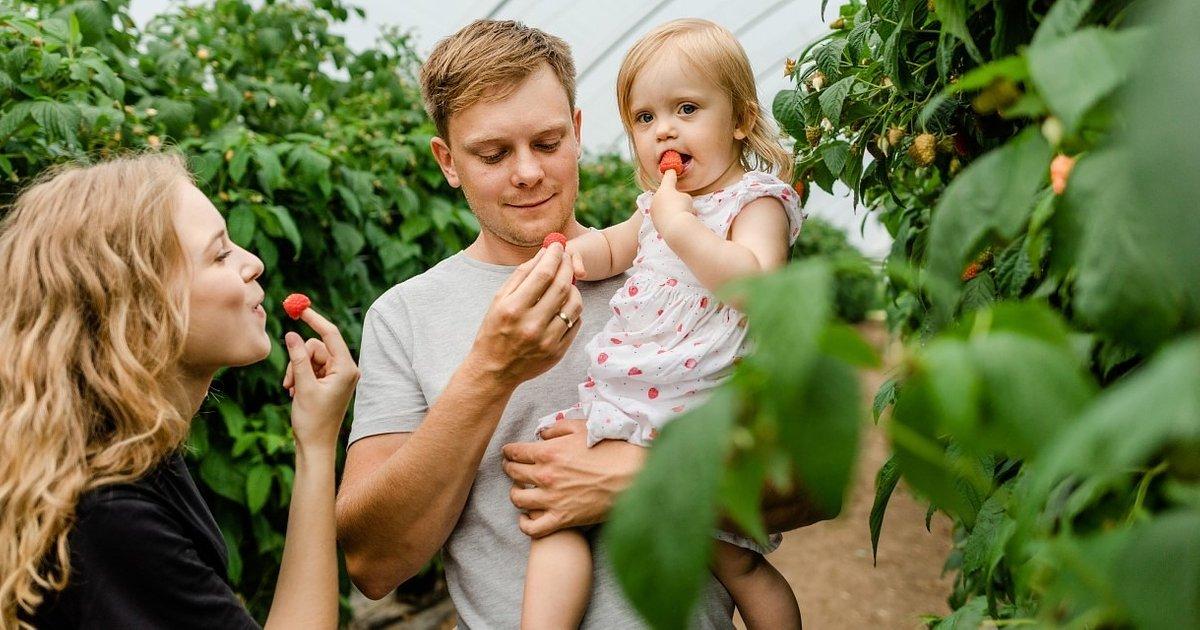 Walory zdrowotne owoców maliny