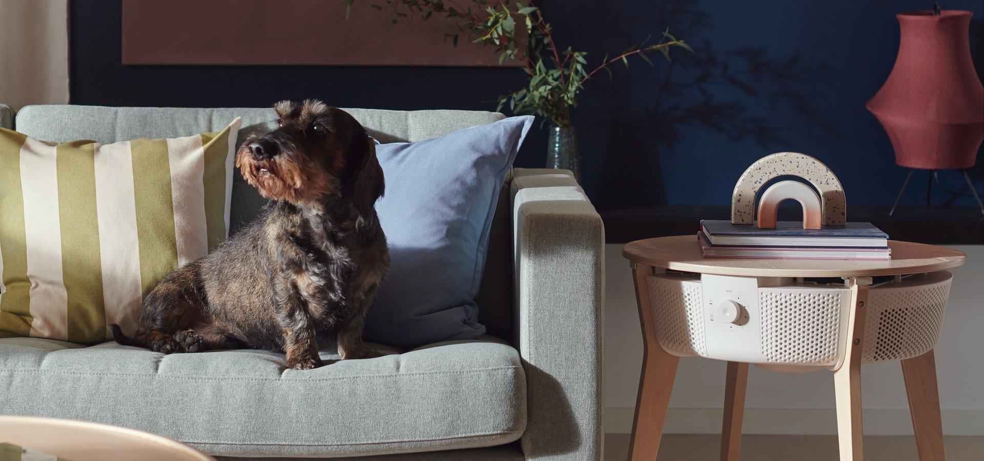 Piękno lasu i inteligentnych rozwiązań dla domu od IKEA