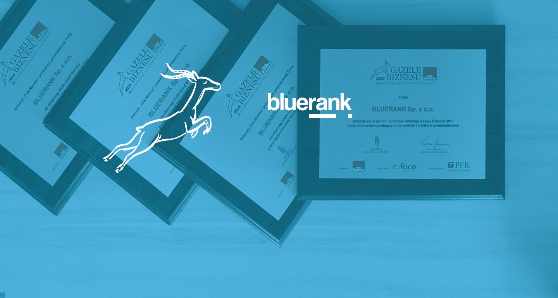 Bluerank Gazelą Biznesu 2017