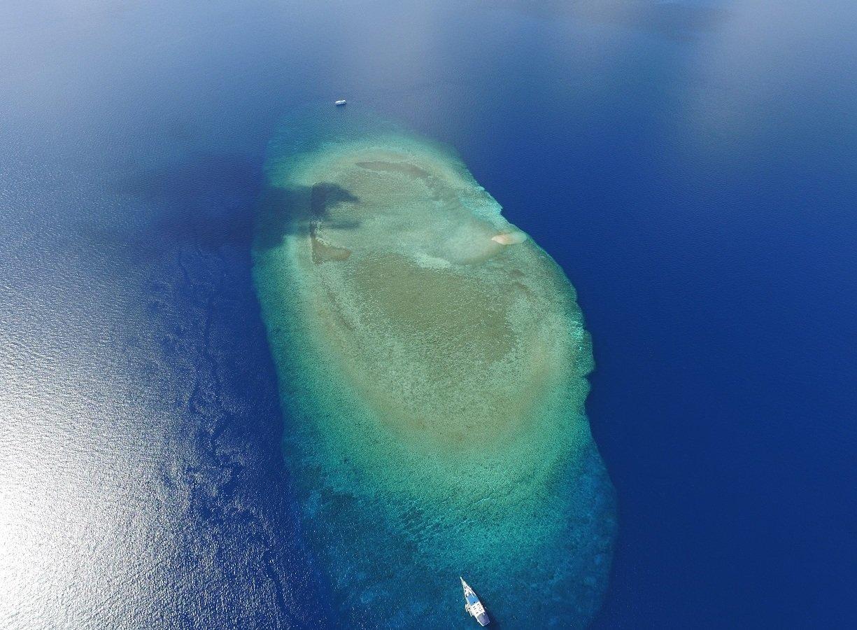 """Archipelag inny niż wszystkie. """"Wspaniałe Filipiny"""" w marcu na kanale Nat Geo Wild"""