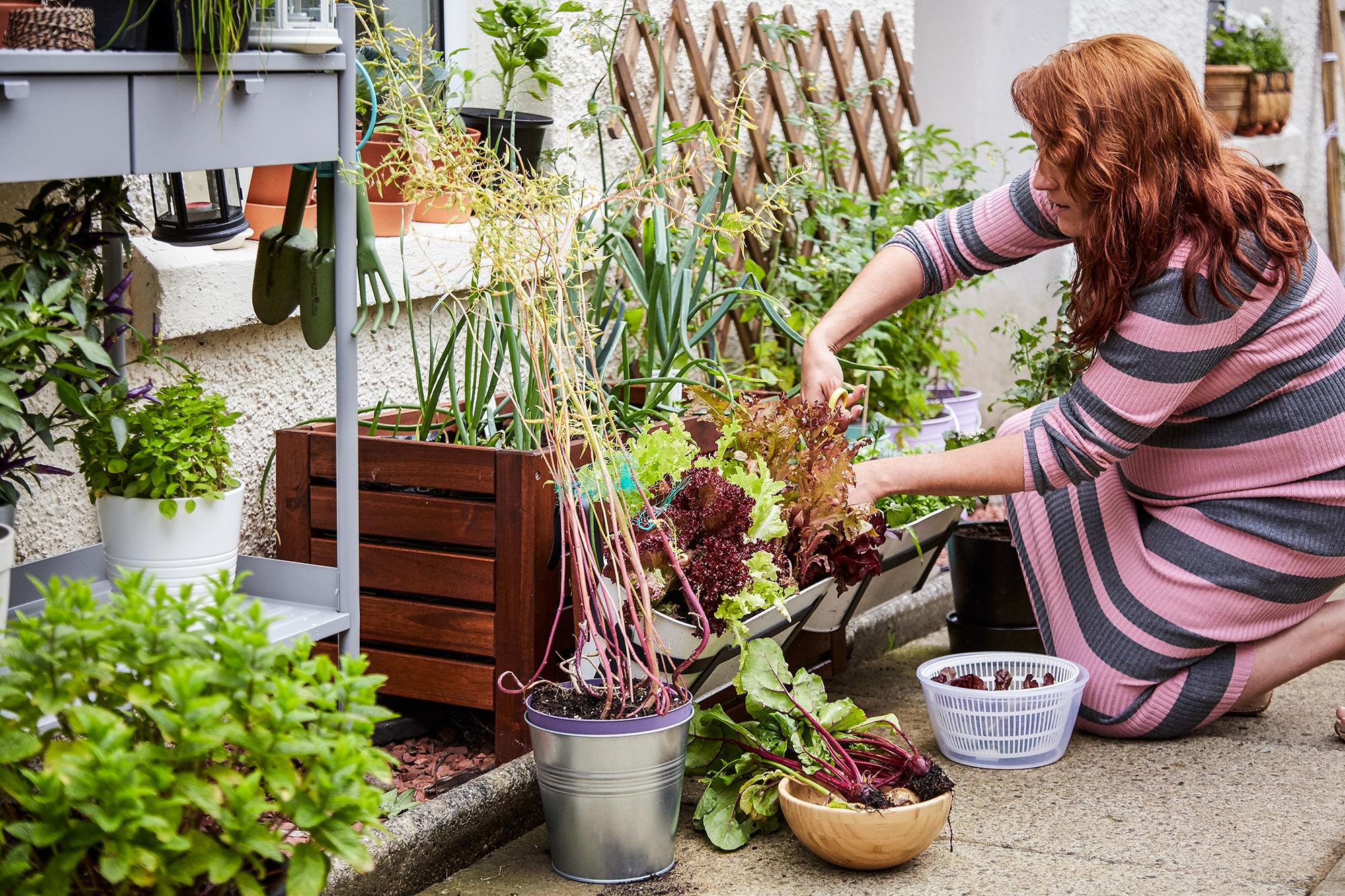 Niech żyje zrównoważony dom  – praktyczne wskazówki od IKEA dla każdego