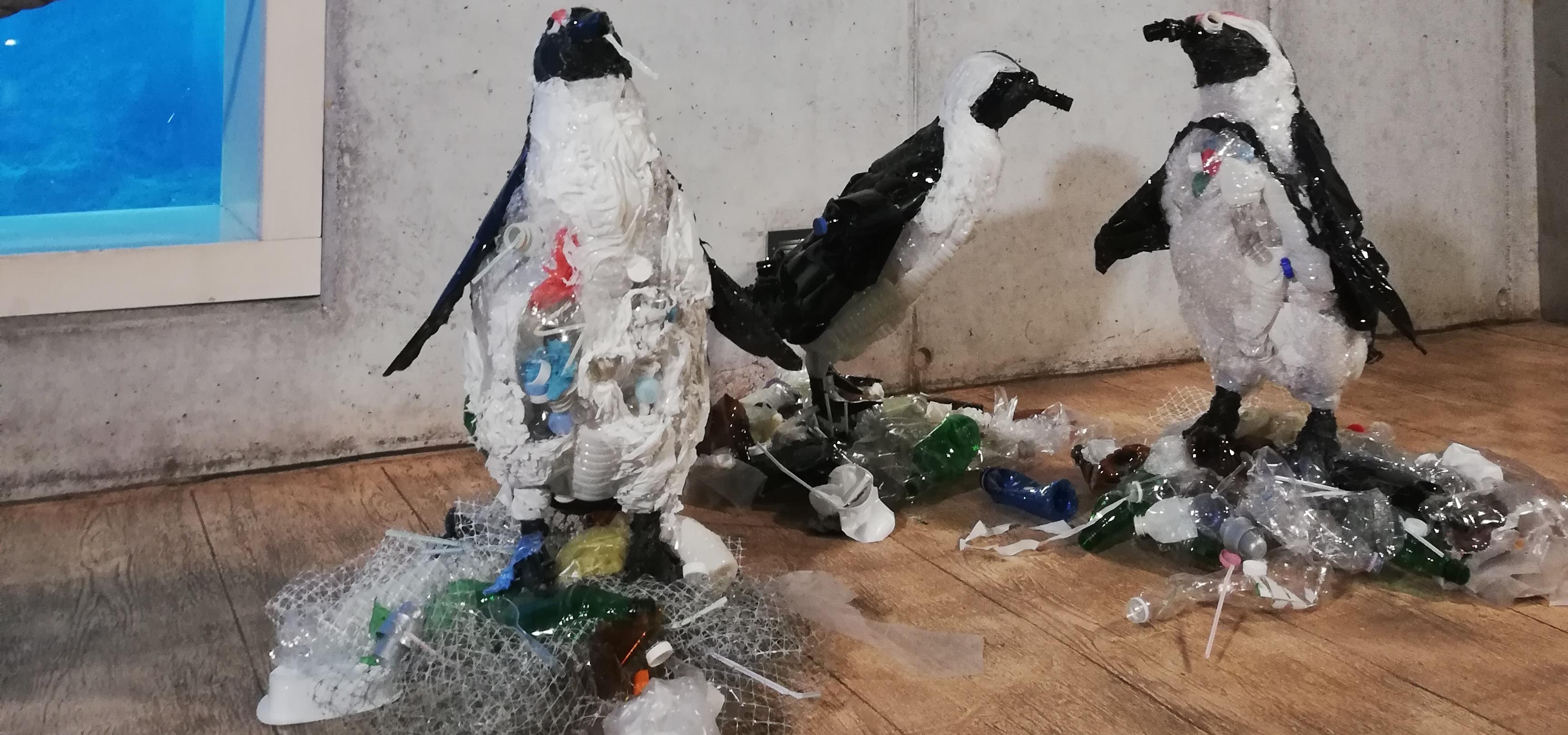 Planeta albo plastik? We wrocławskim ZOO na własne oczy możesz zobaczyć, jaki los czeka niewinne zwierzęta, jeśli nie zaczniemy działać