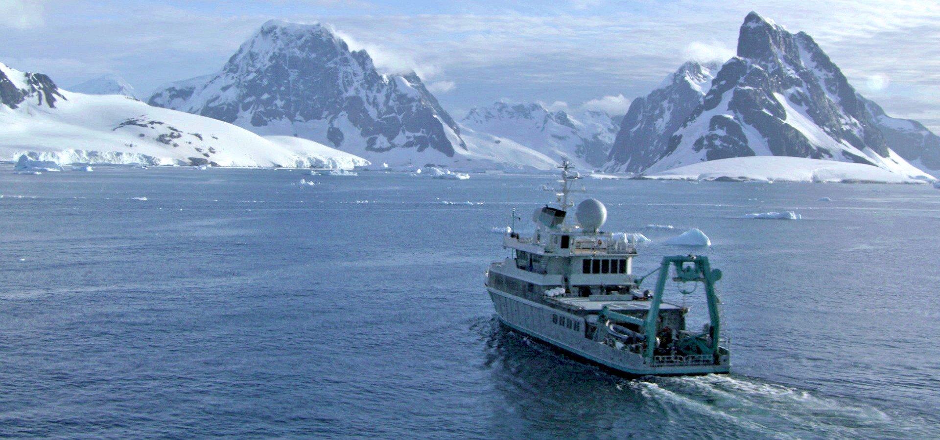 """Monstrualne zwierzęta z lodowatych głębin. """"Podwodny świat Antarktydy"""" w czerwcu na kanale National Geographic Wild"""