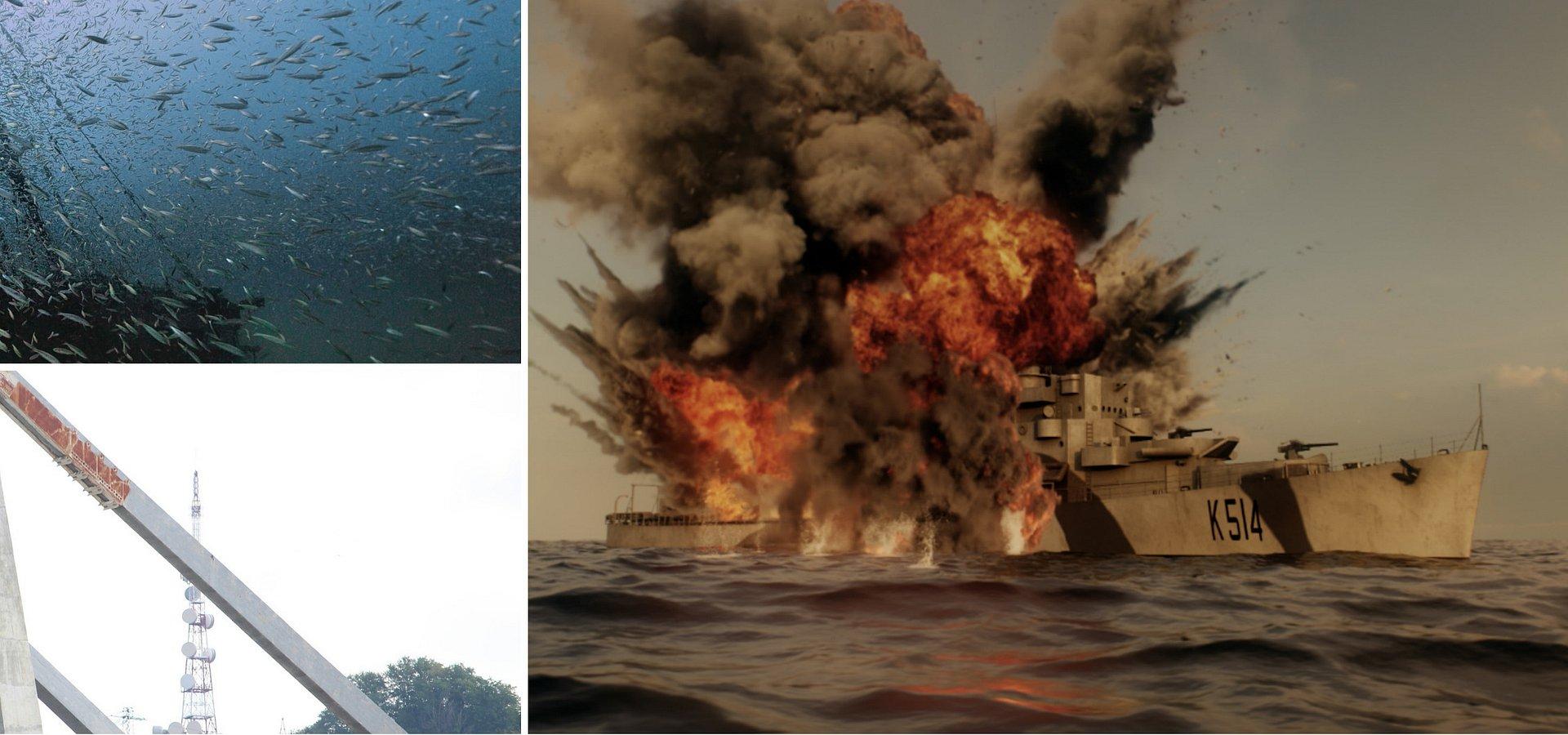Sierpniowe propozycje programowe kanału National Geographic