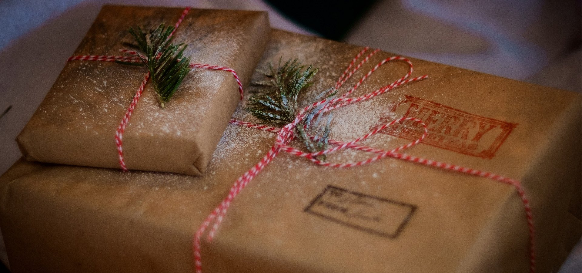 Holiday Gift Guide - Unique & Useful Gifts for Techies