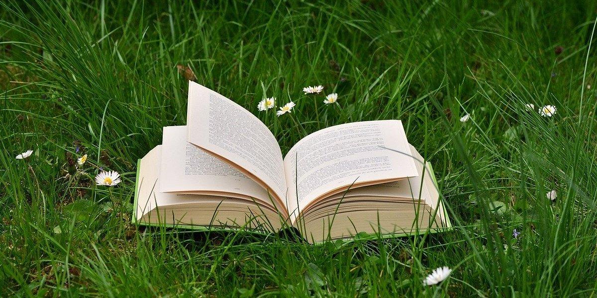 """Biedronka wspomaga seniorów sprzedając charytatywną książkę """"Nadzieja"""""""