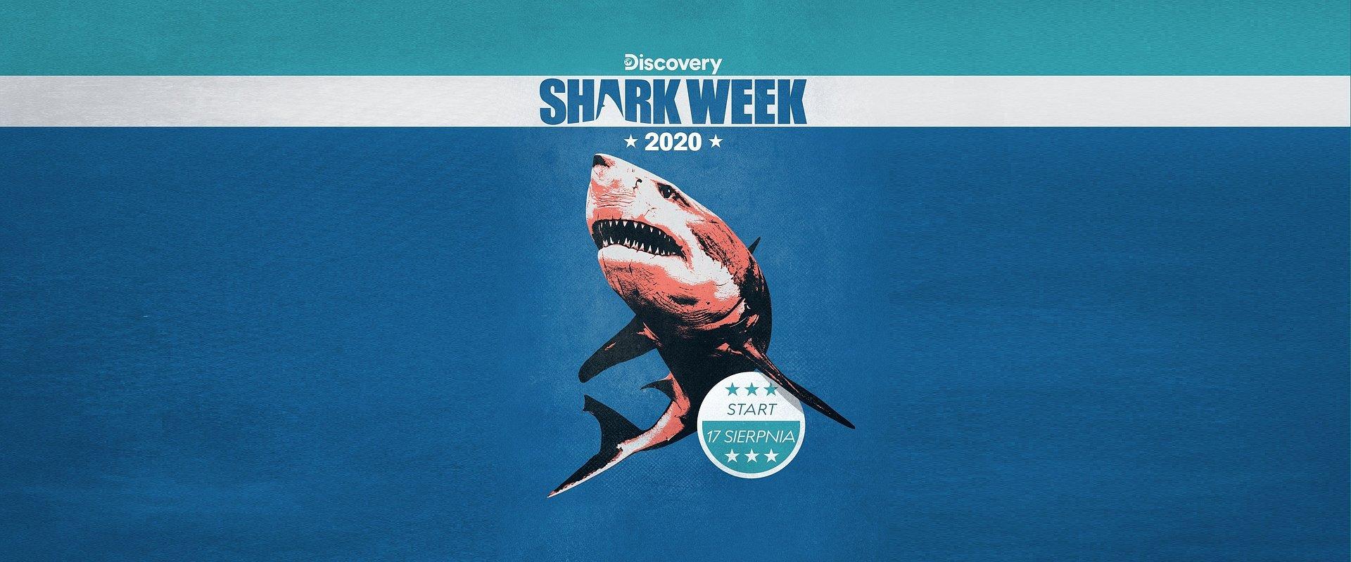 SHARK WEEK 2020 - zmiana kolejności emisji!