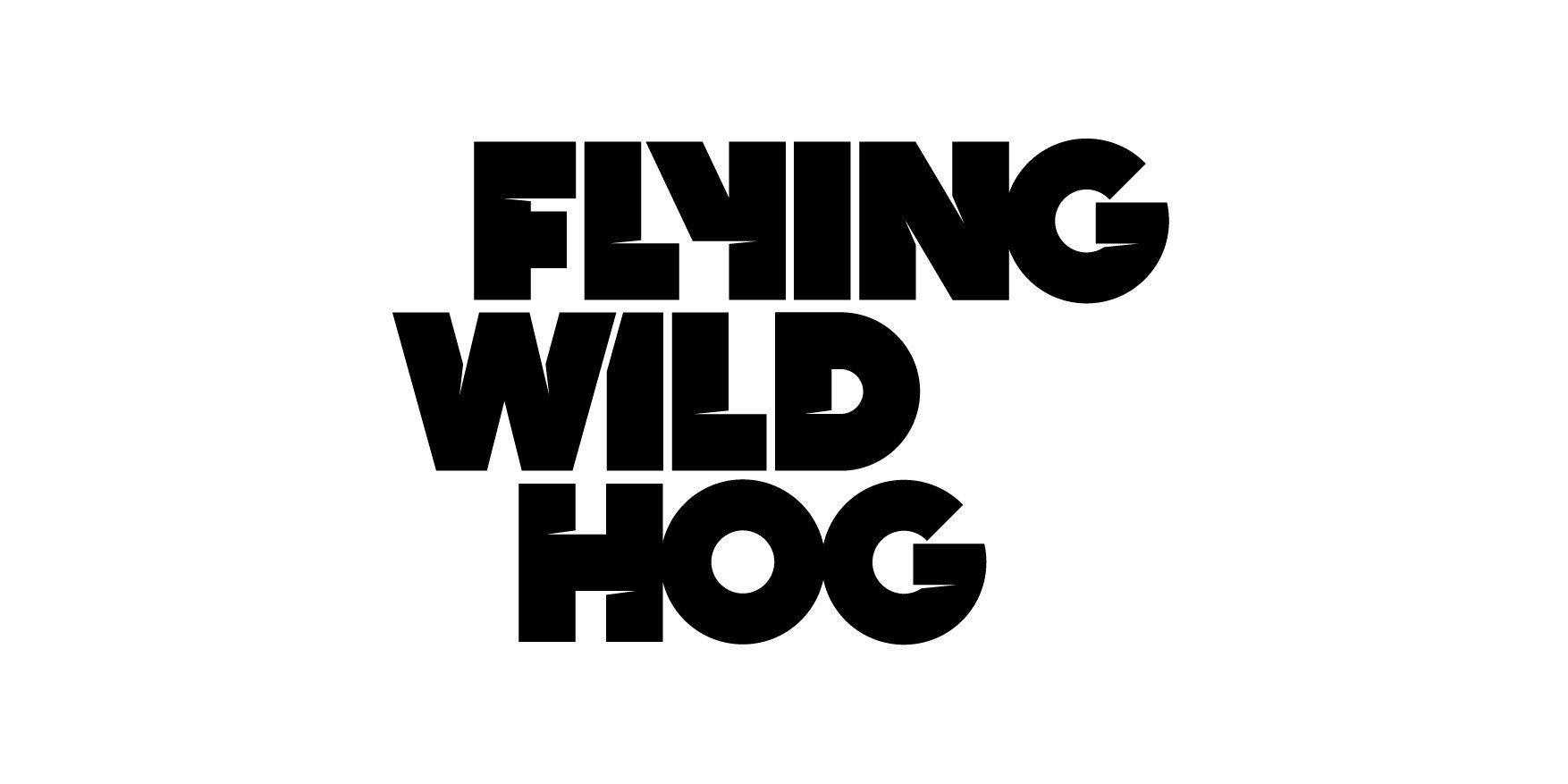 Embracer Group erwirbt Flying Wild Hog von Supernova Capital