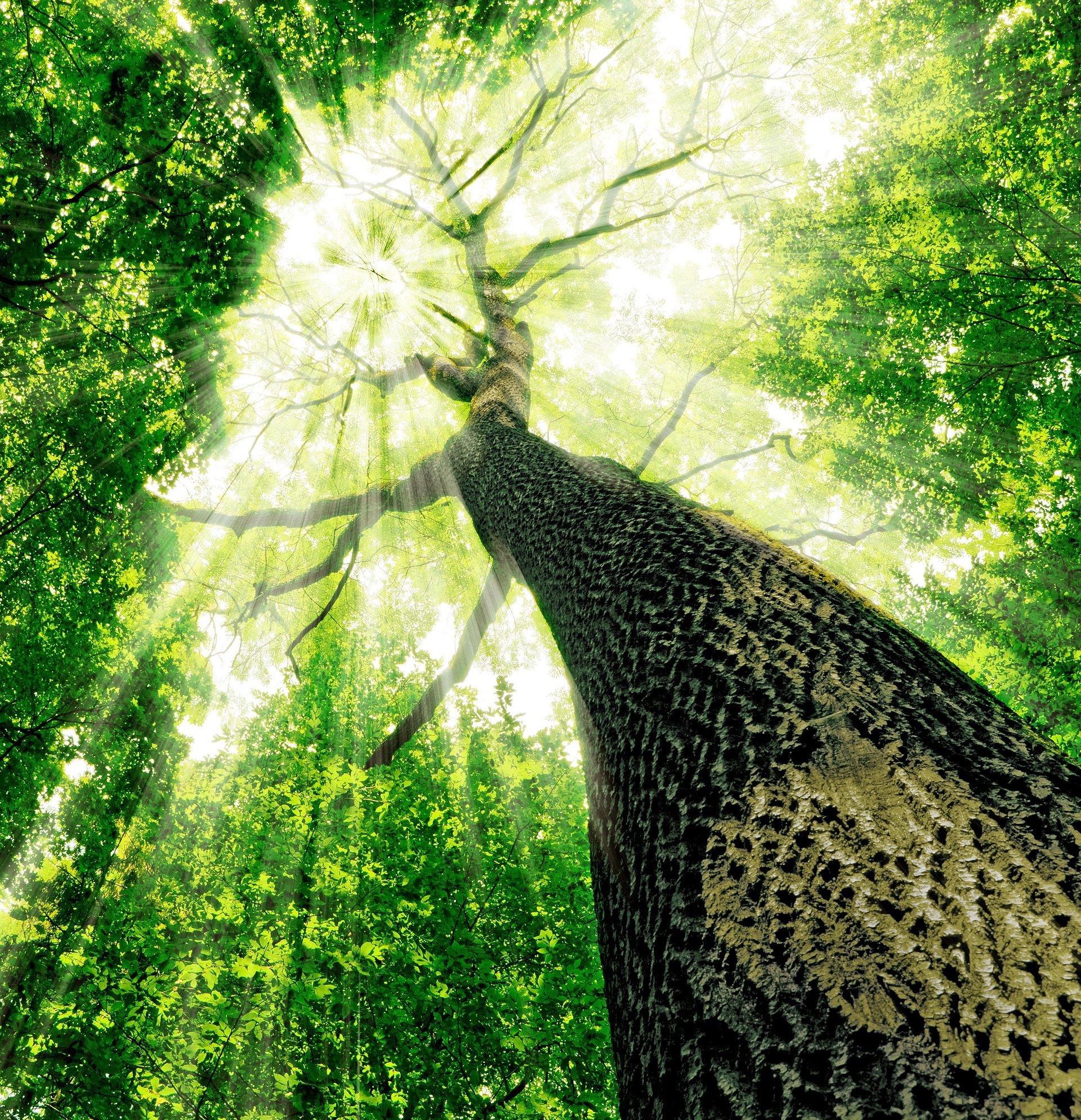 Recykling to przyszłość planety