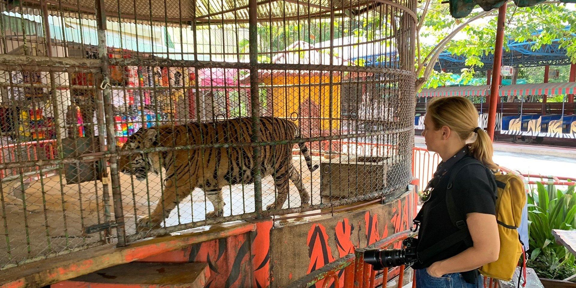 """Kulisy handlu tygrysami w serii """"Ciemna strona świata"""" National Geographic - Mariana van Zeller podąża m.in. tropem Joe Exotica."""