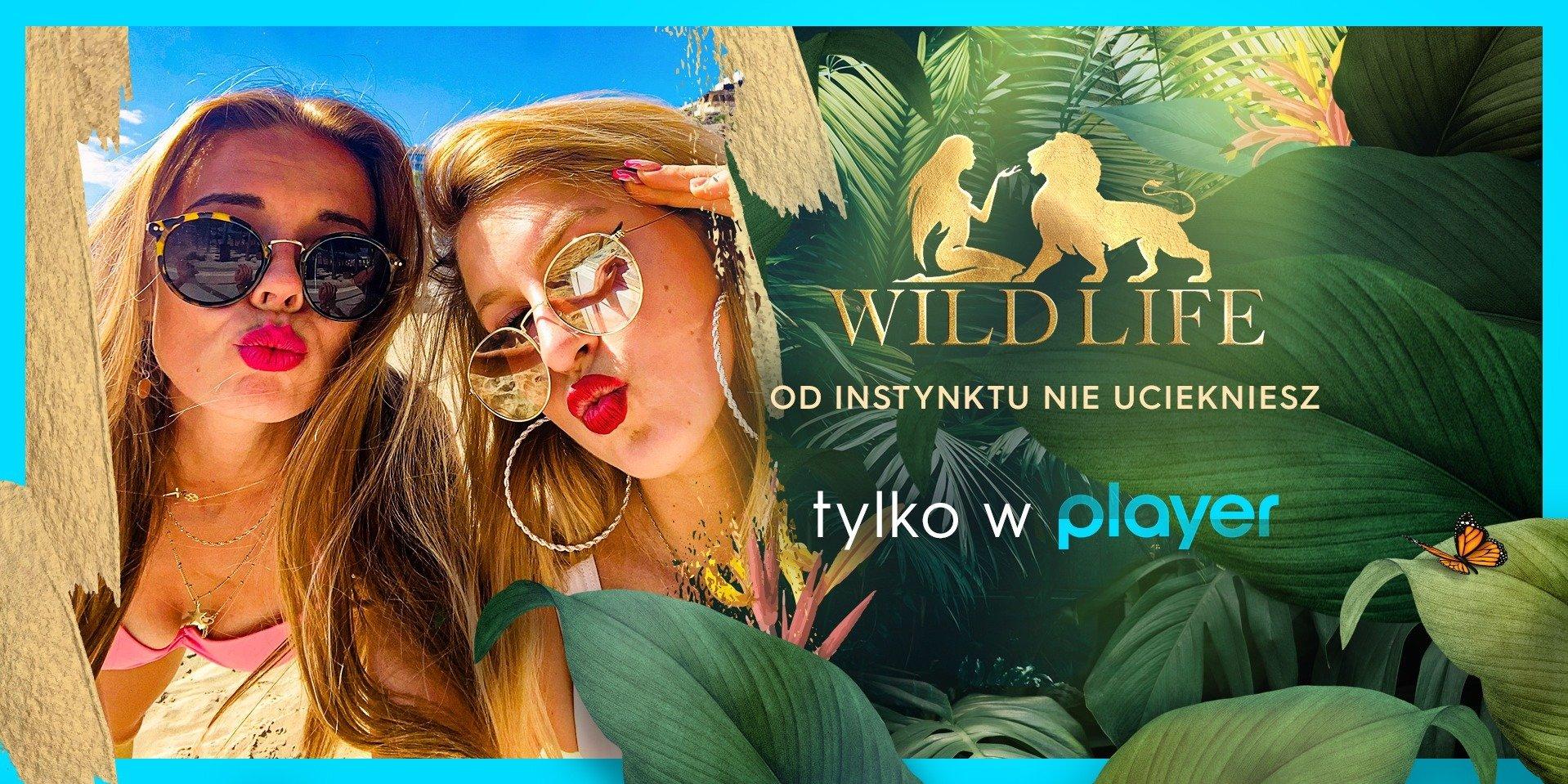"""""""Wild Life"""" – nowe reality show tylko na Playerze!"""