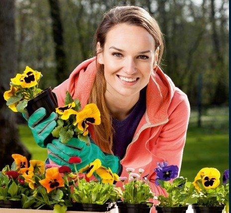 Kwiaty za elektrograty już 26-28.03 we wszystkich sklepach Castorama