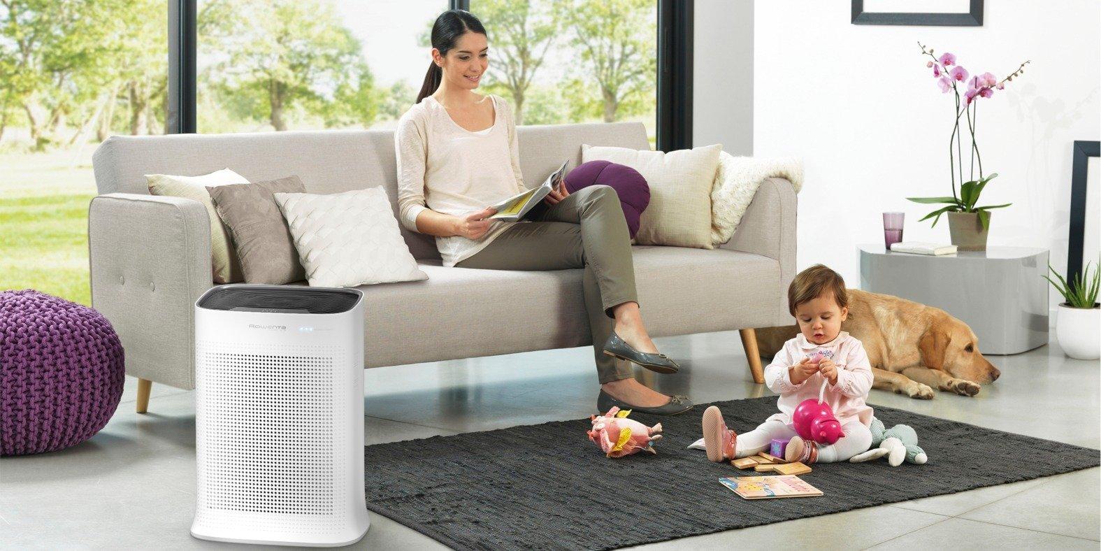 Sabe porque é importante purificar o ar da sua casa?