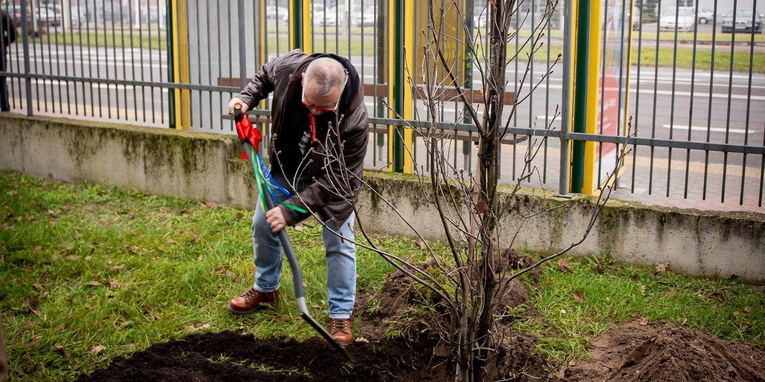 Jurek Owsiak i WOŚP sadzą Lasy Na Zawsze