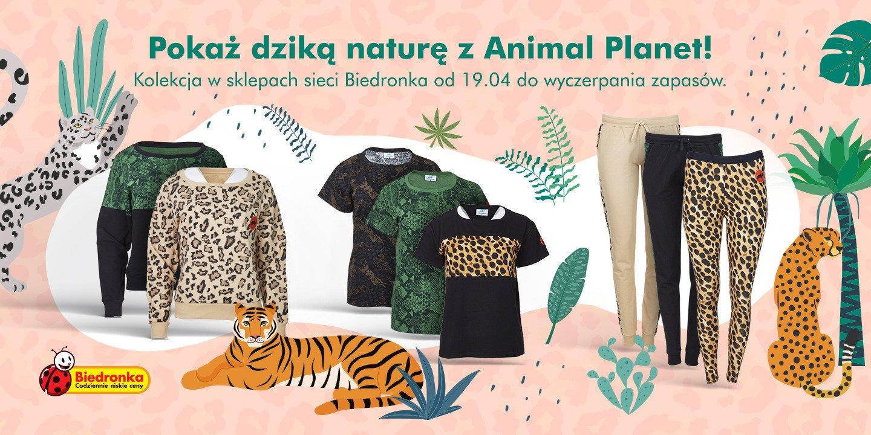 Ubrania z pazurem – wspólna kolekcja Biedronki i Animal Planet