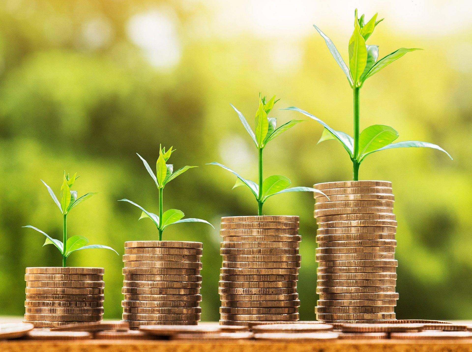 PKO Bank Polski współorganizatorem emisji zielonych obligacji Europejskiego Banku Inwestycyjnego