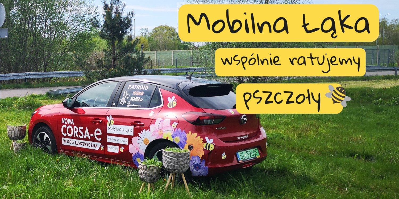 Mobilna Łąka wystartuje w podróż po Śląsku. Pierwszy przystanek – CH Platan w Zabrzu