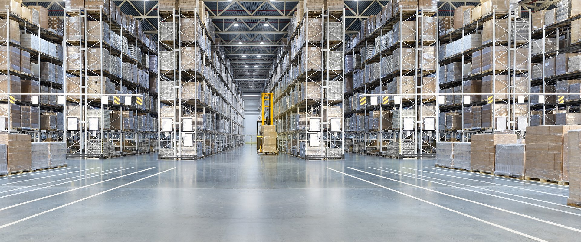 Industrial & Logistics Department at BNP Paribas Real Estate Poland is growing