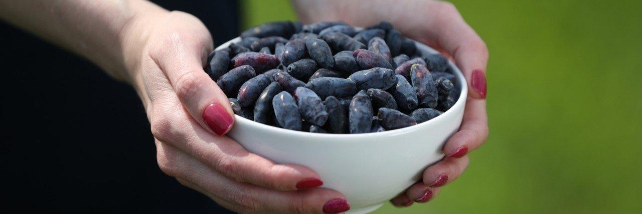 Rośnie liczba producentów, którzy zapraszają na plantacje i przygotowują autopromocję jagody