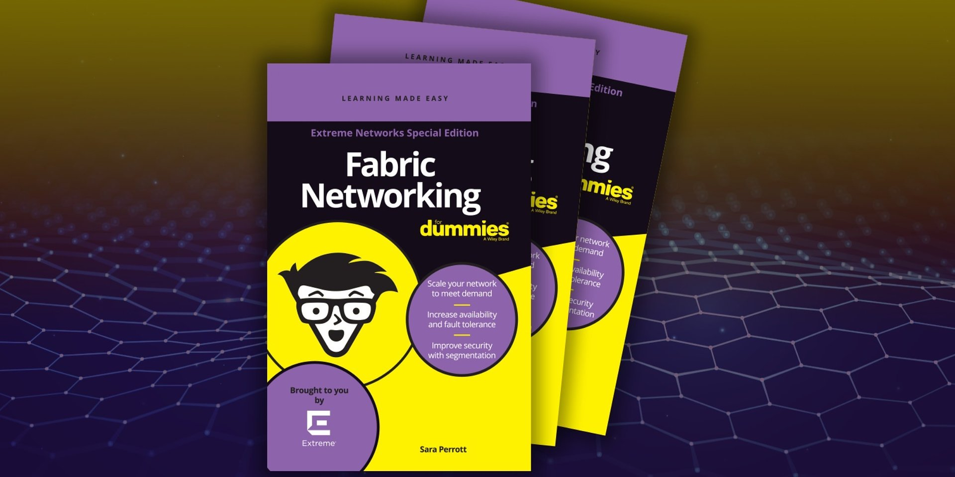 Fabric Networking For Dummies