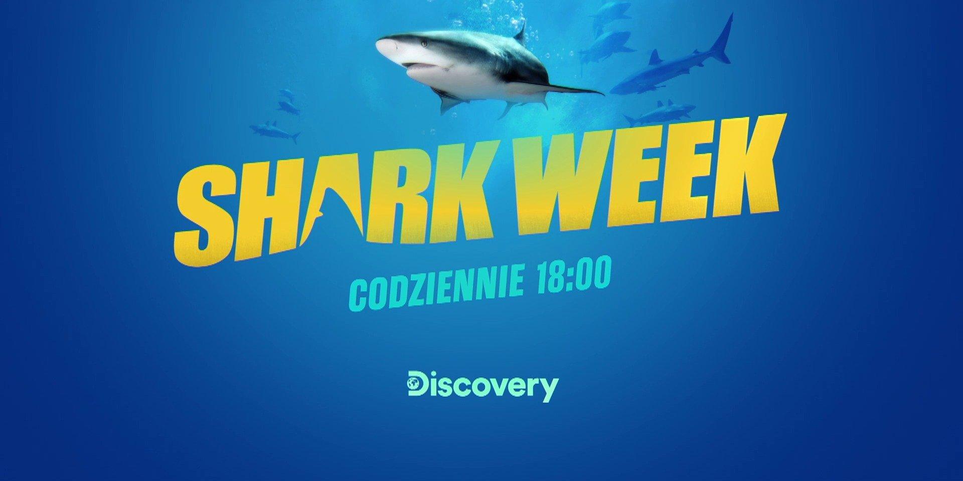 Shark Week – tydzień z rekinami na Discovery Channel i Playerze!