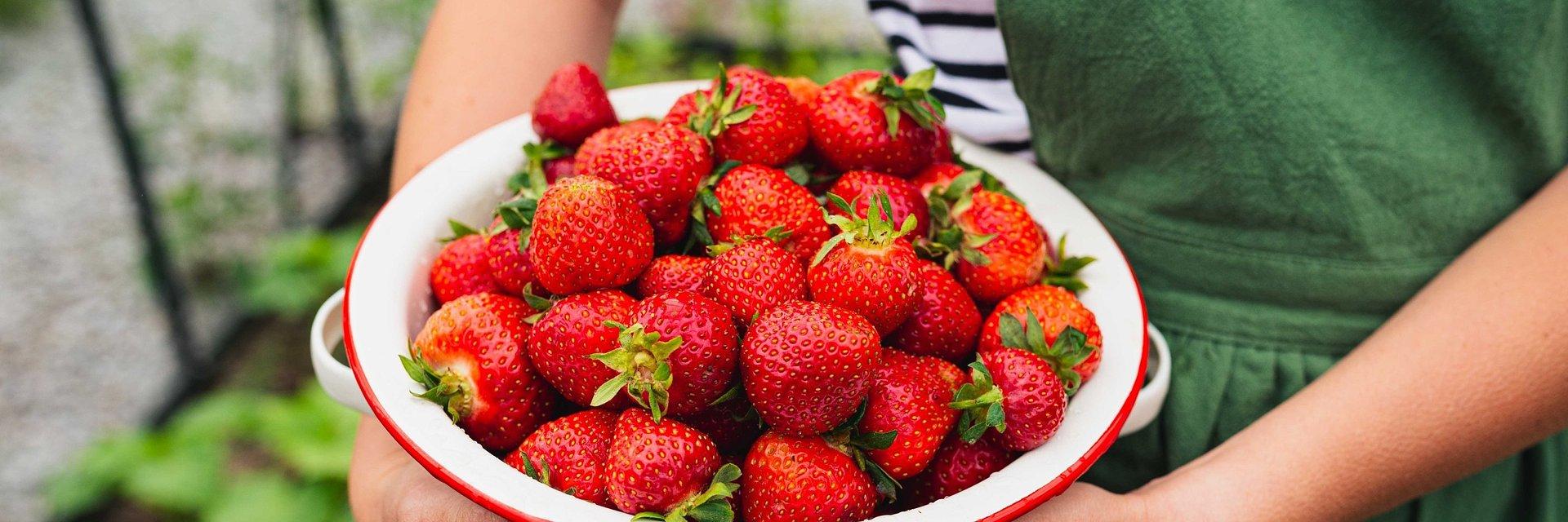 Proste przepisy z wykorzystaniem owoców jagodowych
