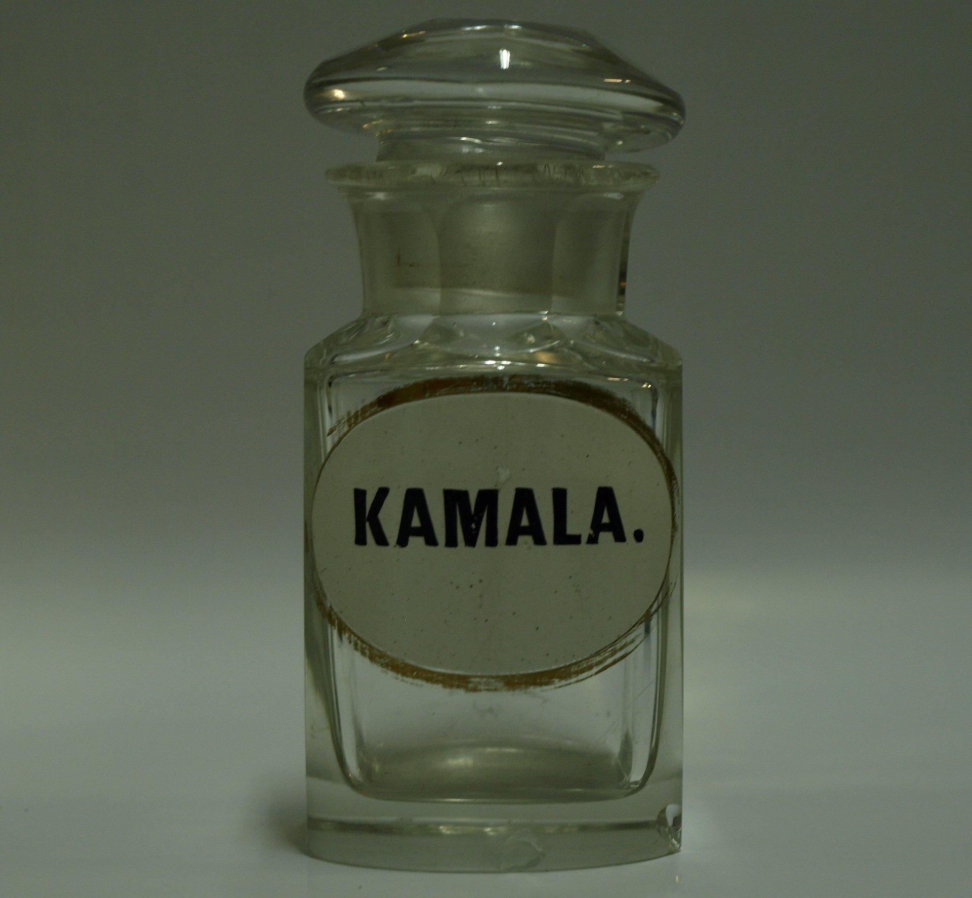 Kamala - czym była kiedyś i czym jest obecnie