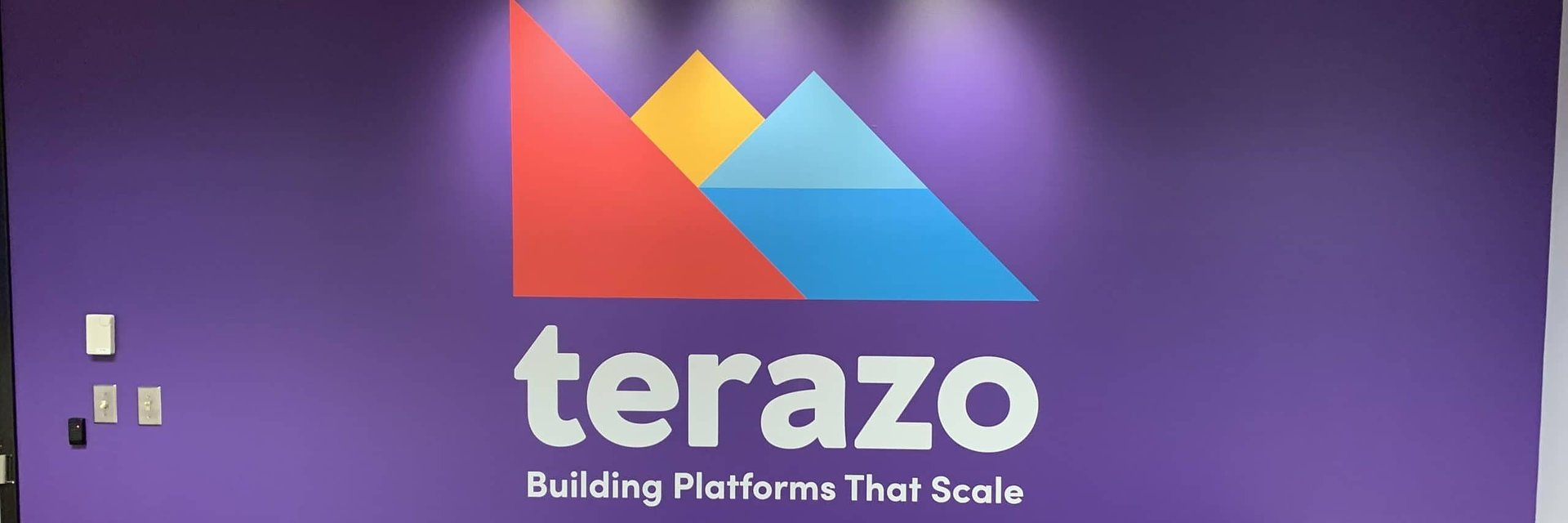 Rapidly-Growing Software & Managed Services Firm APIvista Rebrands As Terazo
