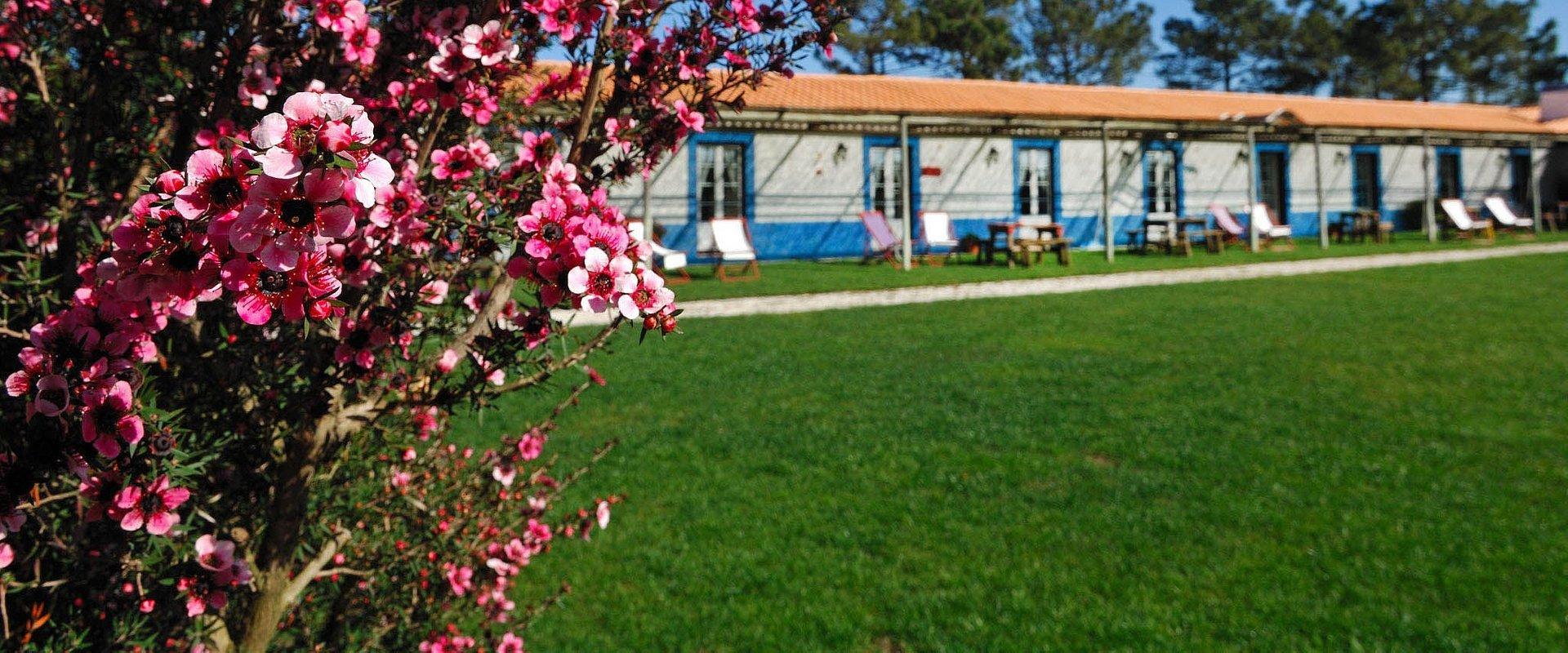 Small Portuguese Hotels sugere um agosto tranquilo no campo