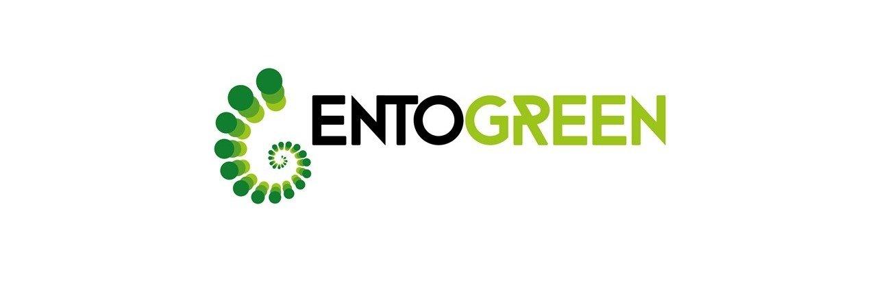 EntoGreen cria projeto que usa insetos para transformar bagaço de azeitona em fertilizante orgânico