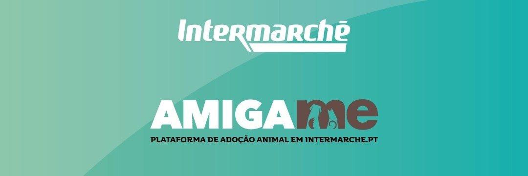 """""""Amiga-me"""" do Intermarché angaria mais de 40 mil refeições para animais abandonados"""
