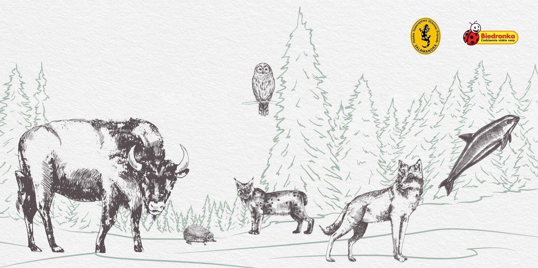 Bezprecedensowe wsparcie Biedronki dla zagrożonych gatunków zwierząt żyjących w Polsce