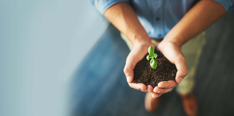 BGK opublikował raport zrównoważonego rozwoju za 2020 r.