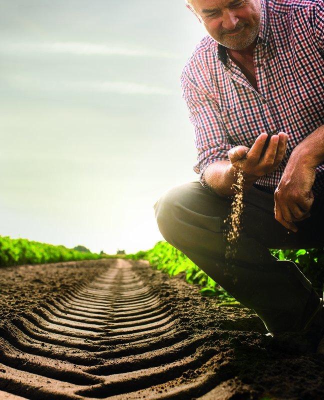 Continental wraca do rolnictwa