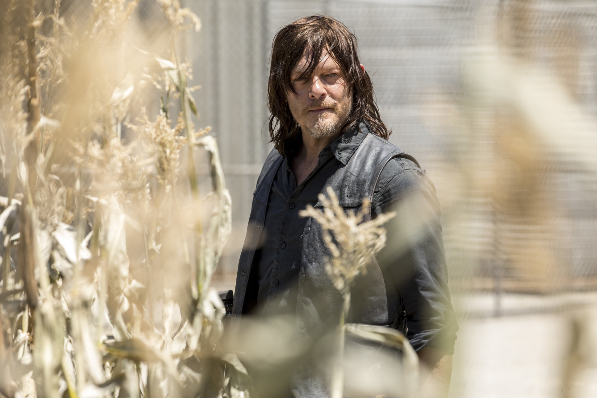 FOX ujawnia datę premiery oraz pierwszy zwiastun 9. sezonu The Walking Dead! Serial powróci na FOX już 8 października o godz. 22:00.