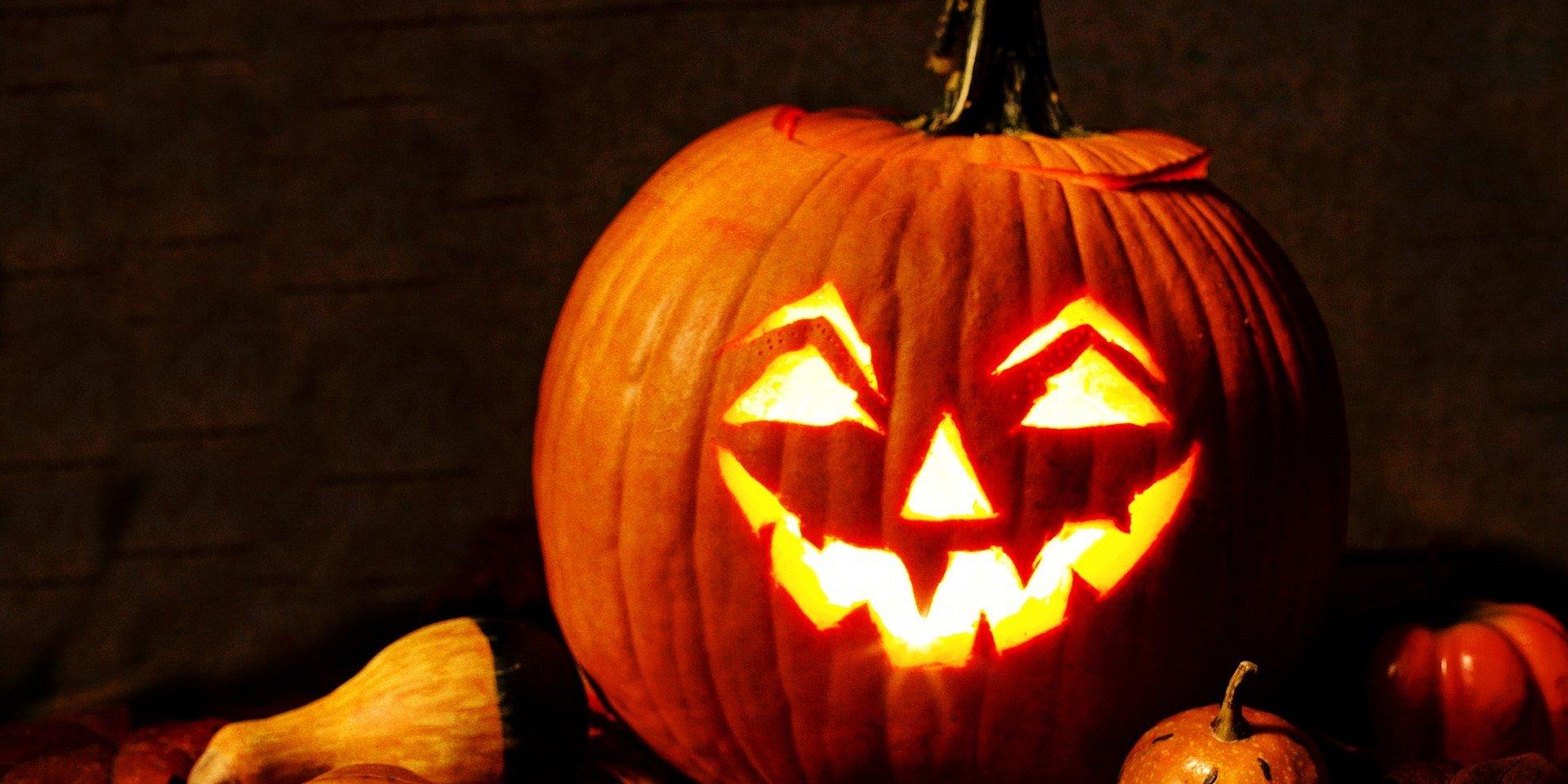 UŁ komentuje: Halloween po łódzku