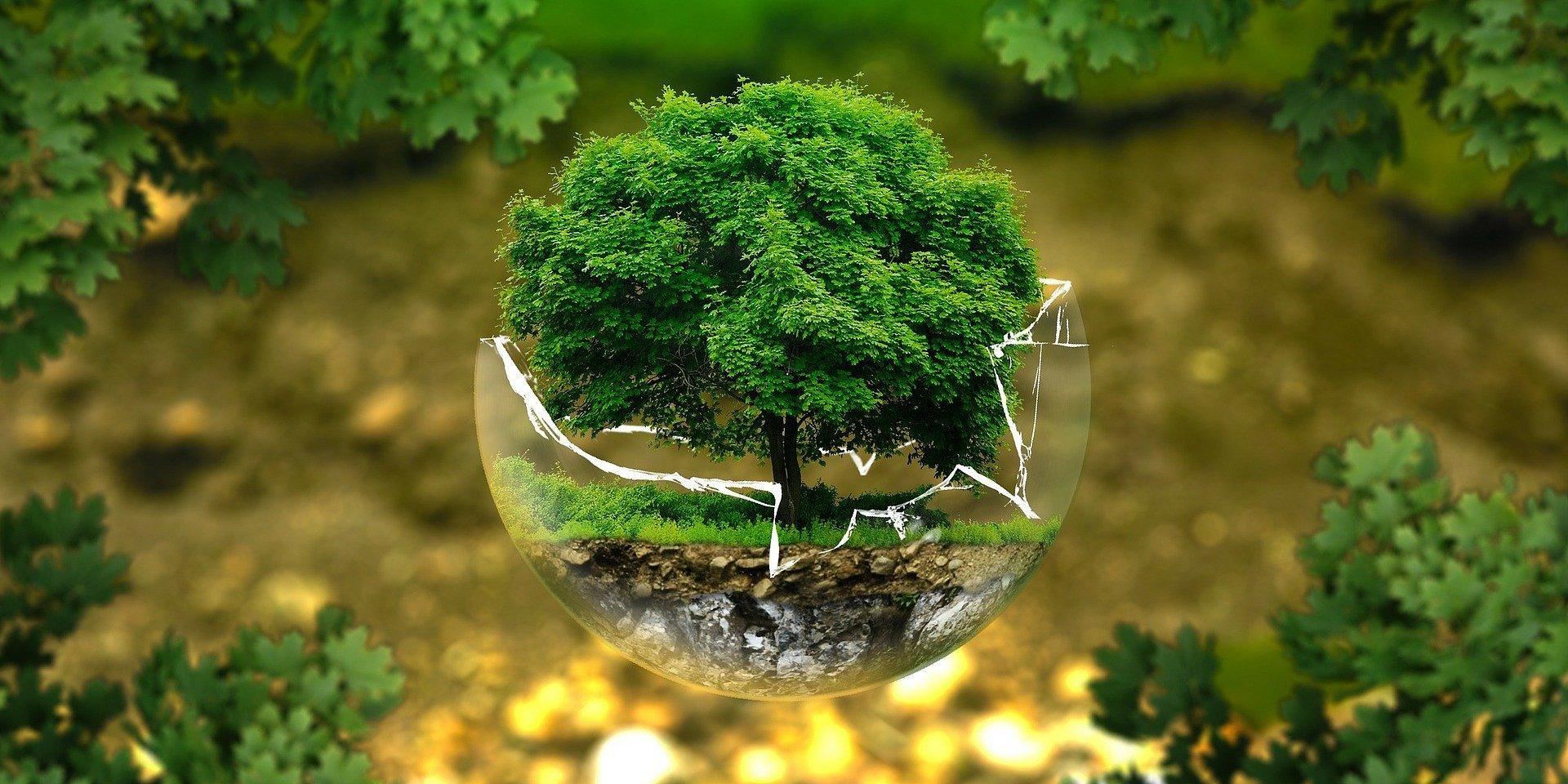 UŁ w Empiku - Czy uratujemy Ziemię?
