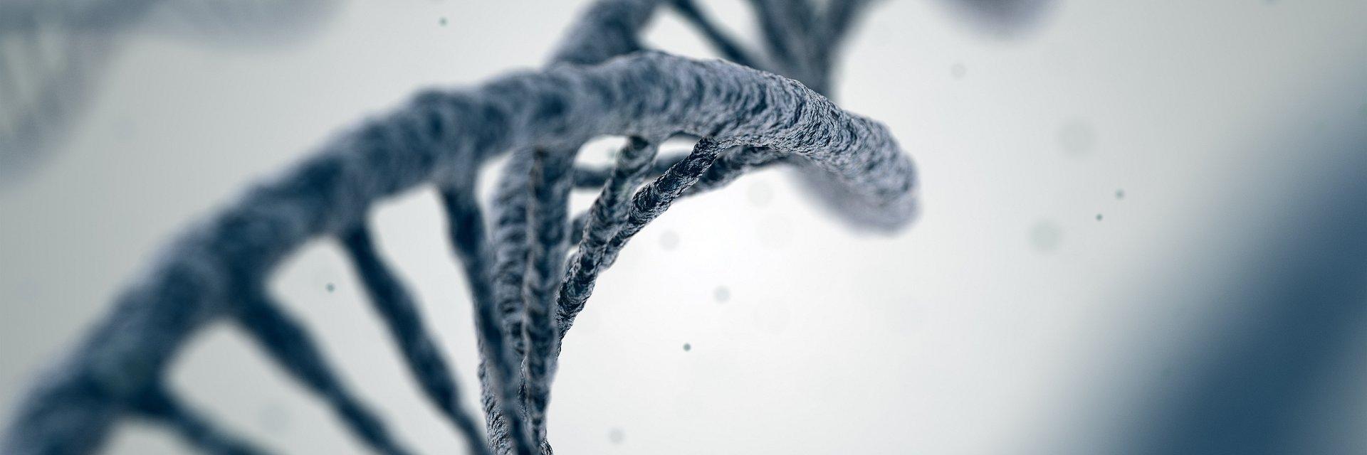 Wiedza o zdrowiu zakodowana w genach