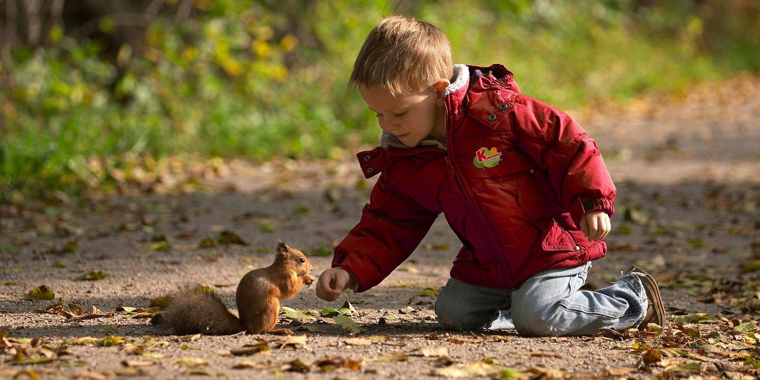 474 przedszkola w województwie dolnośląskim uczą dzieci jak dbać o naturę