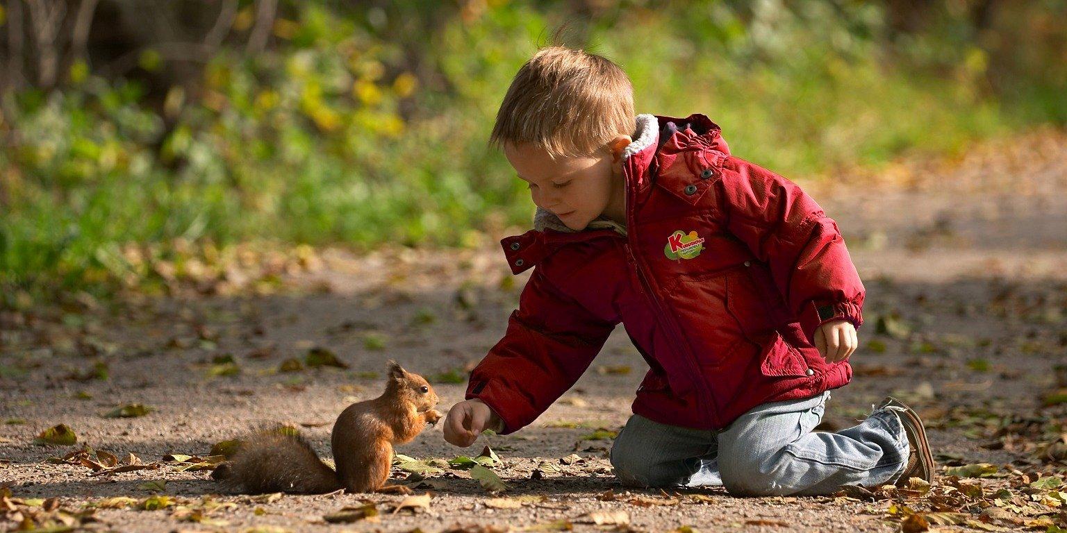 401 przedszkoli w województwie pomorskim uczy dzieci jak dbać o naturę