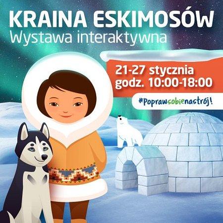 Przyjdź do Focus Mall Piotrków Trybunalski i poznaj tajemnice Krainy Eskimosów!