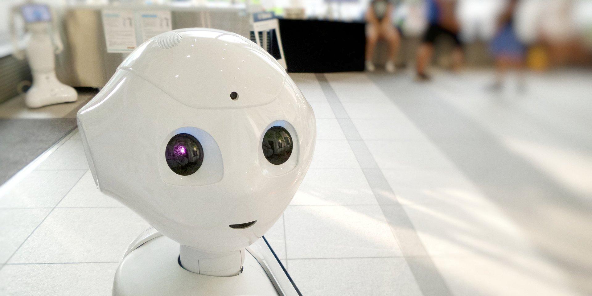 Rekruter Bonifacy i księgowa Honorata – roboty, które zastępują pracowników