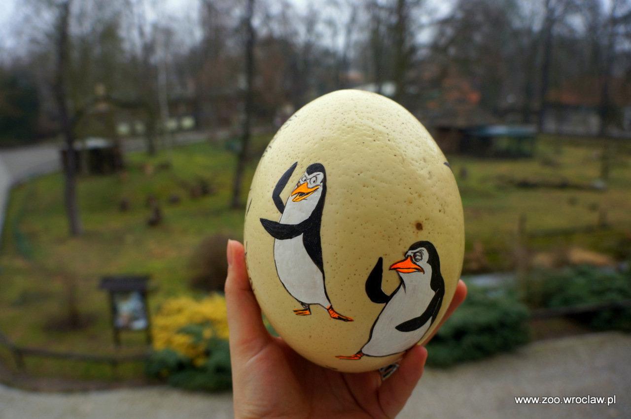 Allegro na pomoc pingwinom