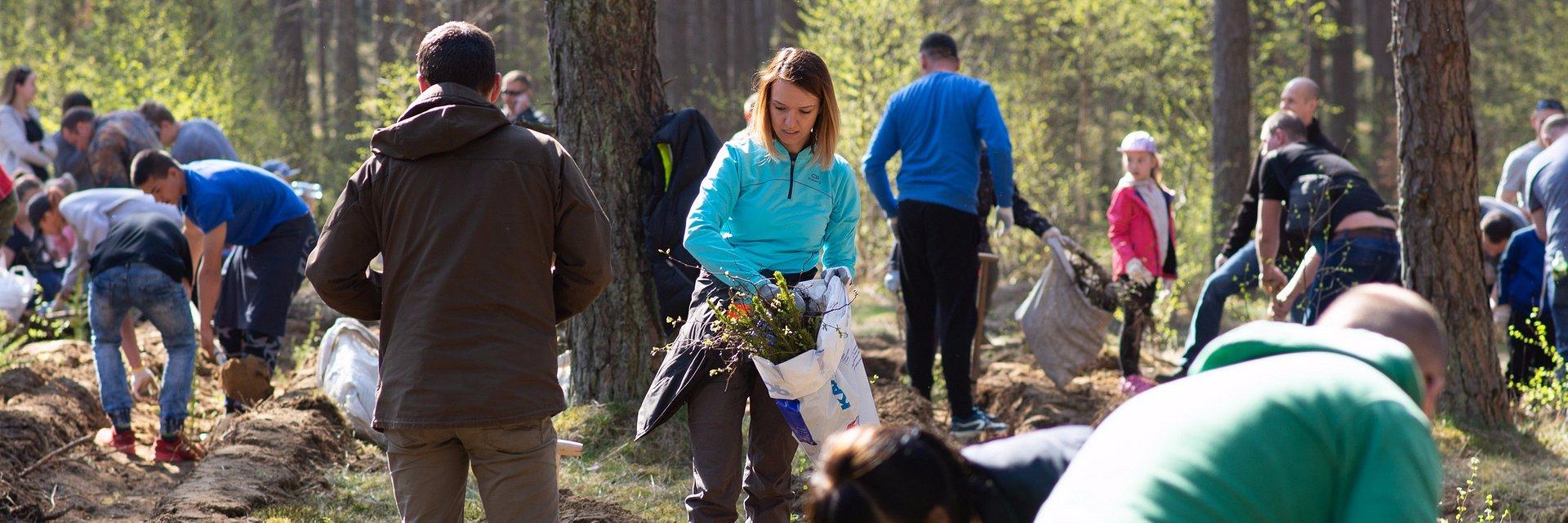 Zasadzimy kolejne 60 tysięcy drzew!
