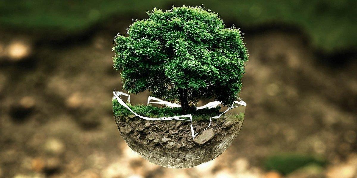 Ekologia w wydaniu Activejet