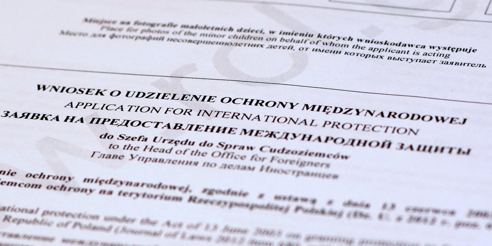 Ochrona międzynarodowa w I połowie 2019 r.