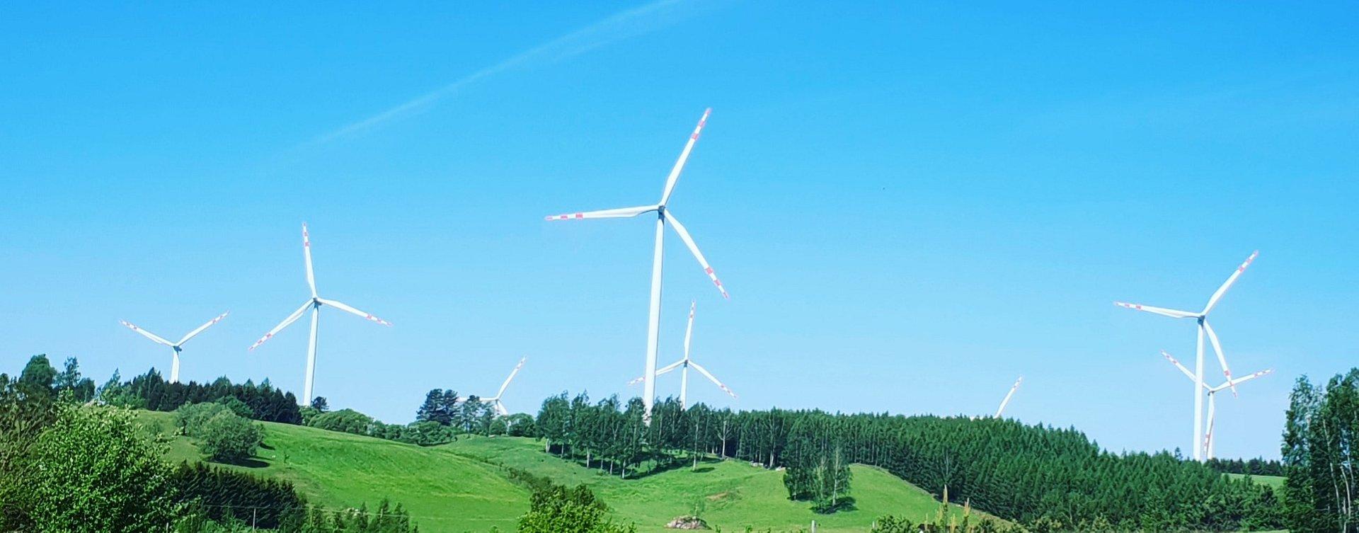 mBank przeznaczy 1 mld zł na zieloną energię